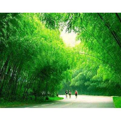 洛阳栾川+石人山+焦作旅游行程线路