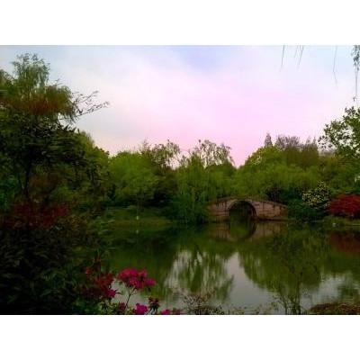 郑州去华东五市夕阳红旅游,郑州去上海苏州杭州旅游价格