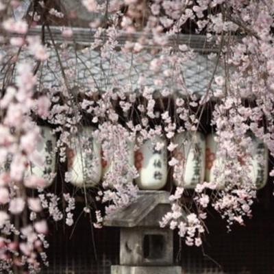 郑州到日本旅游|十月河南郑州去日本旅游报价