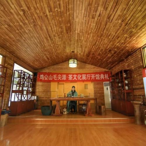 鸡公山毛尖源·茶文化展厅今日正式揭牌