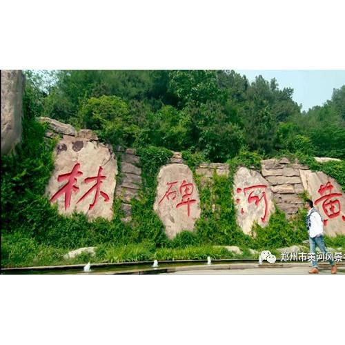 黄河风景名胜区:研学旅行,见证成长