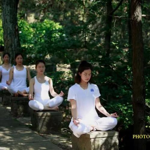 鸡公山携手圣梵瑜伽,重磅开启山湖间的身心对话!