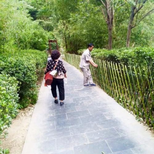 披星戴月护绿色丨八里沟景区创建5A立榜样!