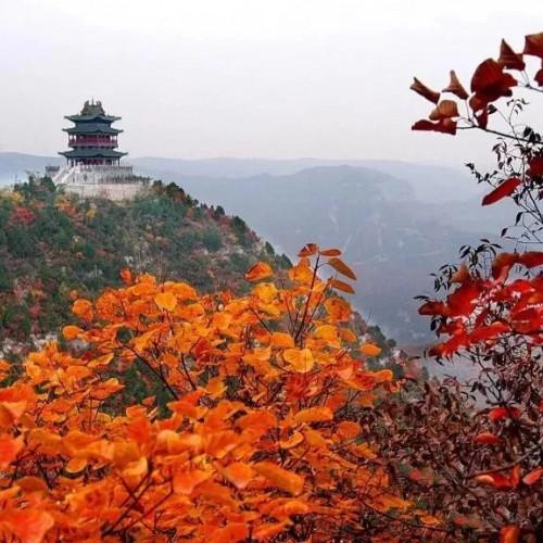 相约珏山赏红叶,尽情享受秋天的静谧