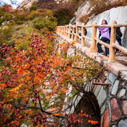 """游嵩山、赏红叶、观大典,这样的""""绝色""""怎能错过"""