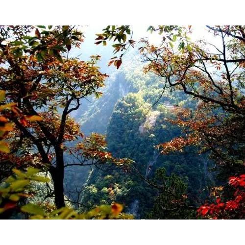 【诗歌】咏金丝大峡谷