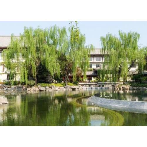 西安唐华华邑酒店,为世界献上一份蕴含中华文化之美的大礼