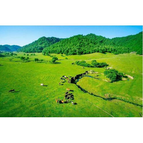 关山草原2日游位列全国十大热门目的地