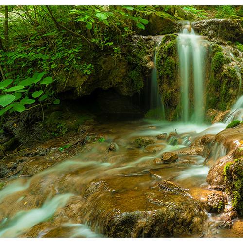 王府竹海度假旅游区:栾川旅游全域全景的一道崭新风景线
