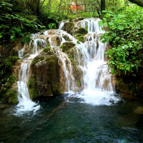 用山水创意快乐,让内心回归大自然,来王府竹海体会诗意浪漫