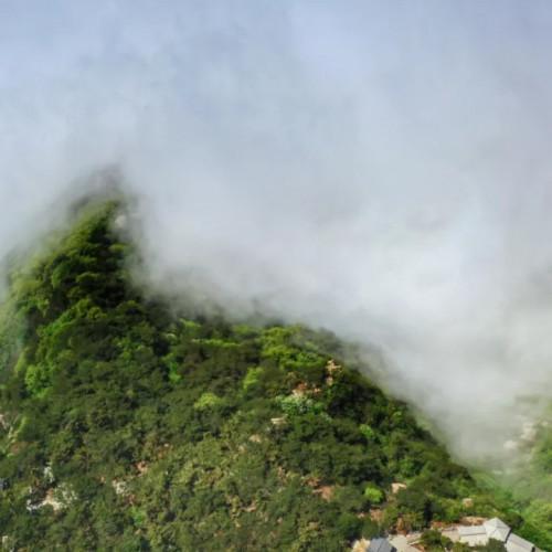 """云海笼罩下的蒙山如""""天空之城"""",宛若飘逸仙境"""