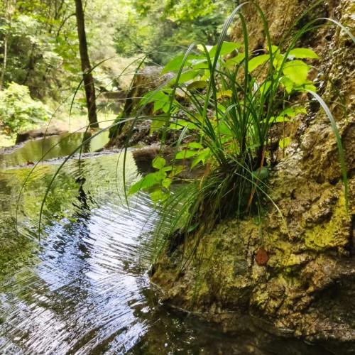 来金丝峡感受宁静祥和的环境,去憧憬未来的无限可能