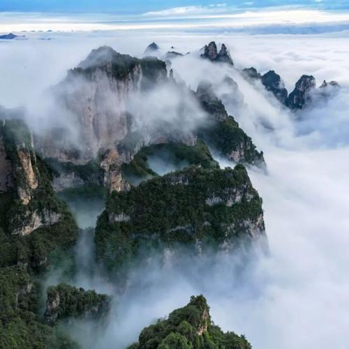 云海中的王莽岭变成了一幅幅烟云笼罩、水墨般的画面