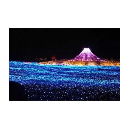开封首个网红7D光影乐园,9月25日启封故园盛大开启