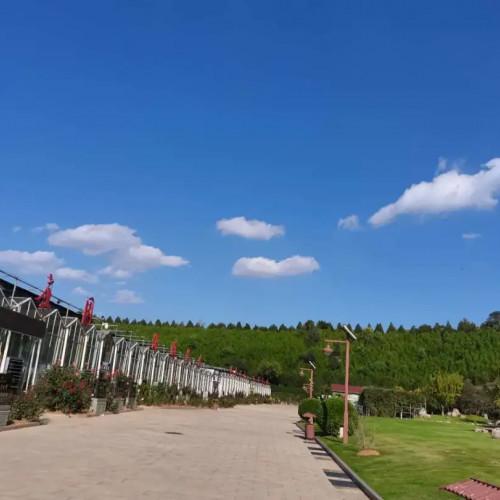 皇城相府生态文化旅游区旗下所有景区喜迎八方宾客的到来
