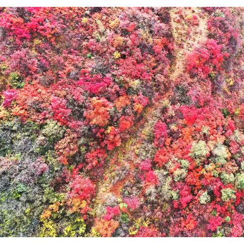 来黄河丹峡感受那大自然的馈赠美景吧