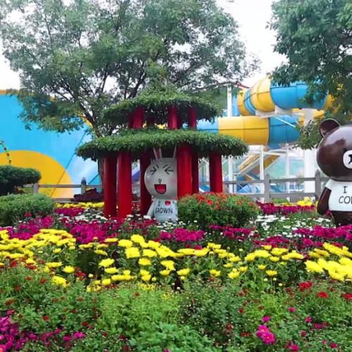 """五龙山推出游乐园双""""十一""""抢票活动"""