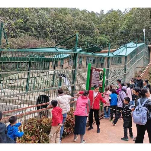 来栾川竹海野生动物园,感受动物世界的新奇