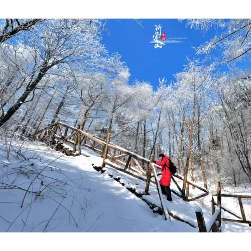 如果冬天要感受雪韵的美,那就走一回沂蒙山云蒙景区