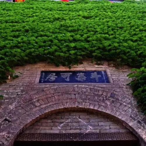 这个夏天来皇城相府生态文化旅游区打卡放飞
